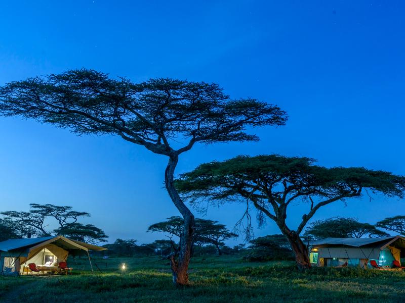 Ndutu Wilderness Camp