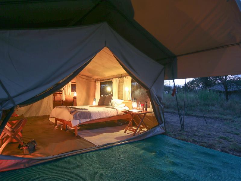 Serengeti North Room