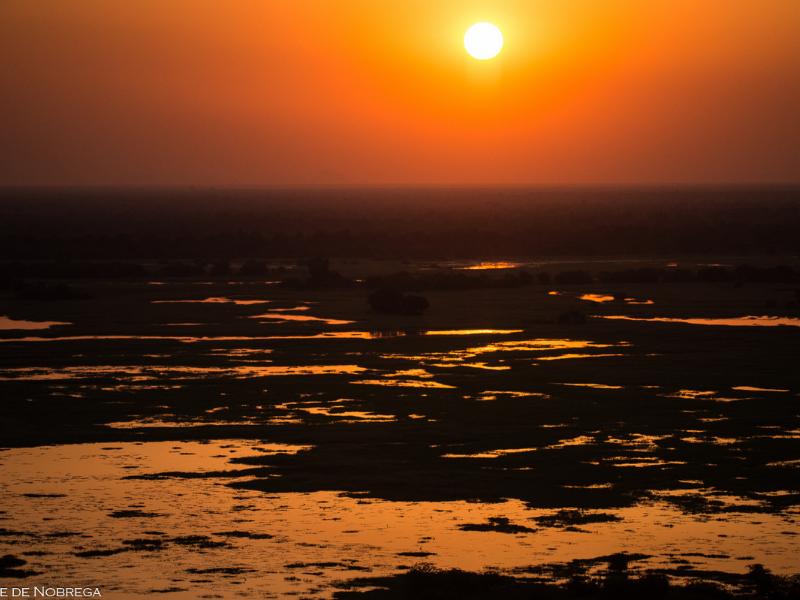 Sunset - Zakouma - Chad - Kyle de Nobrega