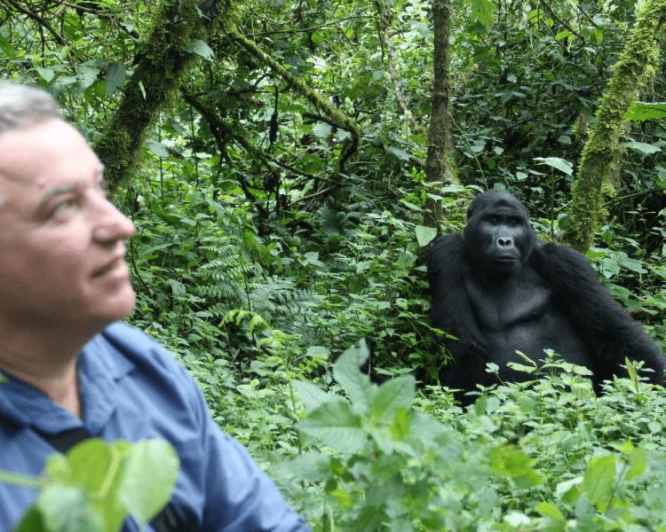 uganda_wildlife_gorillas_bwindi_15